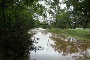 Photo of Bear Creek